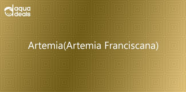 Artemia(Artemia Franciscana)