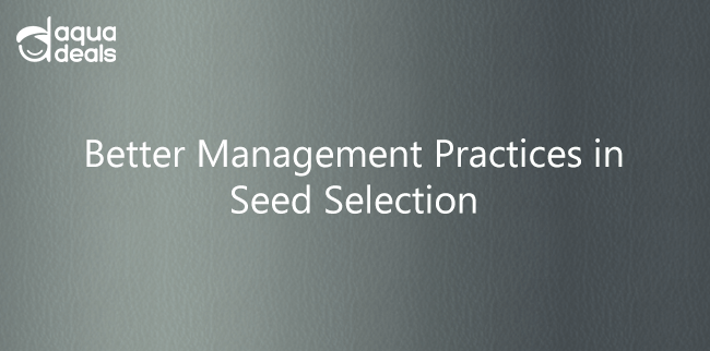 Better Management Practices in Seed Selection