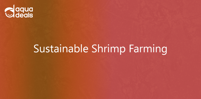 Sustainable Shrimp Farming