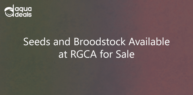 Seeds and Broodstock Available at RGCA for Sale