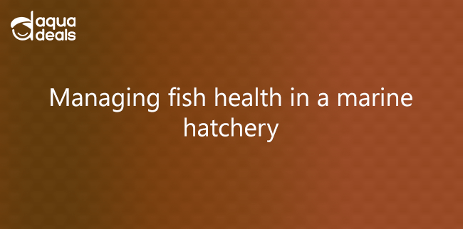 Managing fish health in a marine hatchery