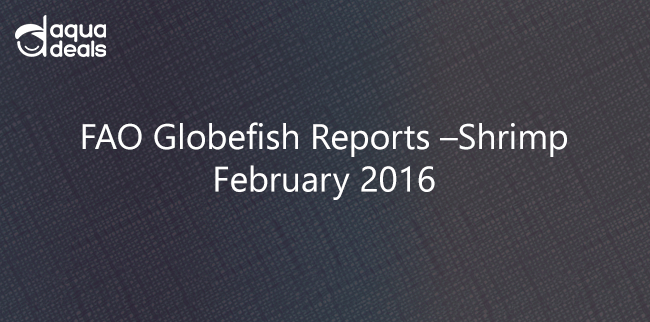 FAO Globefish Reports –Shrimp February 2016