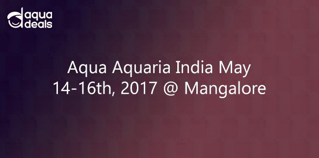 Aqua Aquaria India May 14-16th, 2017  @ Mangalore