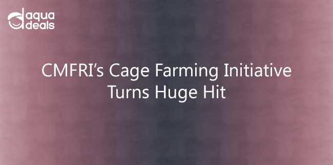 CMFRI's Cage Farming Initiative Turns Huge Hit