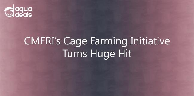 CMFRI's Cage Farming Initiative Turns Huge Hit