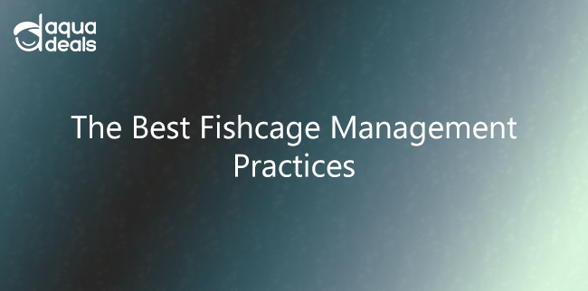 The Best Fishcage Management Practices