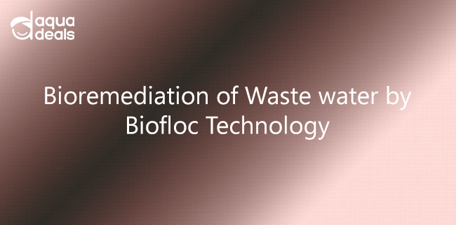 Bioremediation of Waste water by Biofloc Technology