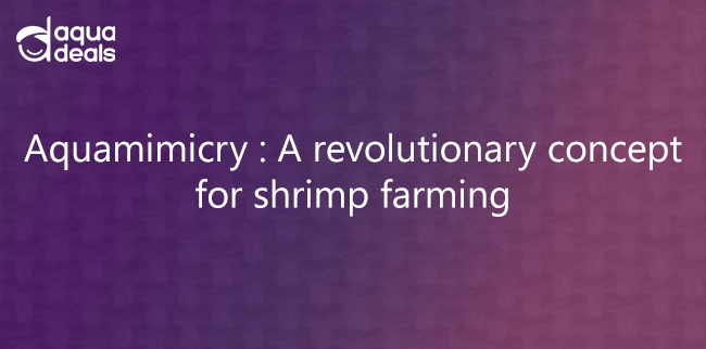 Aquamimicry : A revolutionary concept for shrimp farming