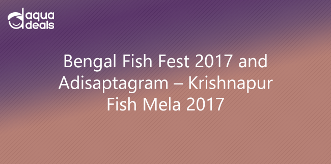 Bengal Fish Fest 2017 and Adisaptagram – Krishnapur Fish Mela 2017