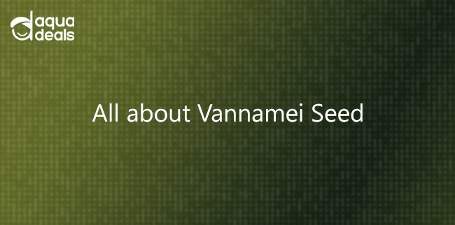 All about Vannamei Seed