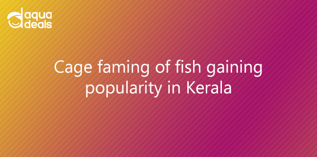 Cage faming of fish gaining popularity in Kerala