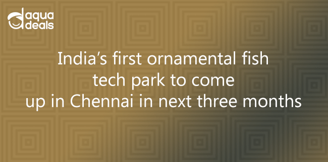 India's first ornamental fish tech park to come up in Chennai in next three months