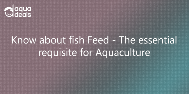 Know about fish Feed - The essential requisite for Aquaculture