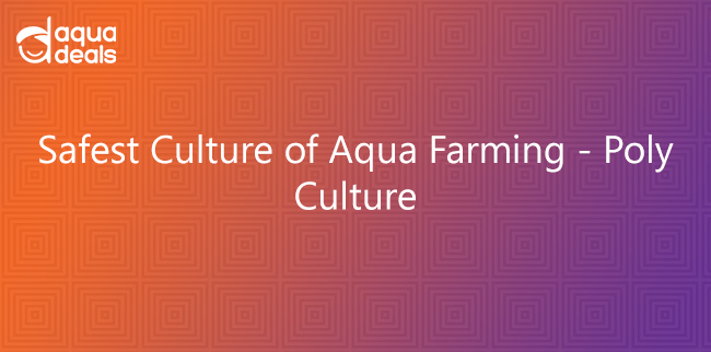 Safest Culture of Farming - Poly Culture