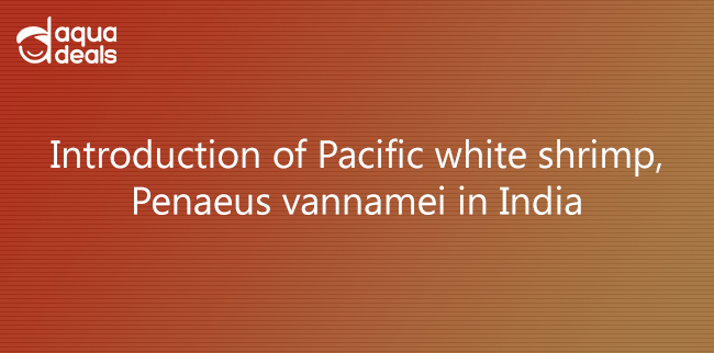 Introduction of Pacific white shrimp, Penaeus vannamei in India