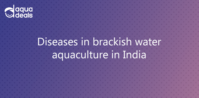Diseases in brackish water aquaculture in India