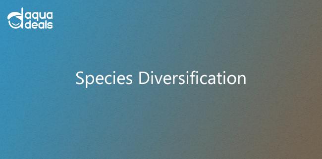 Species Diversification