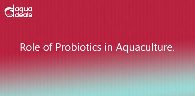 Role of Probiotics in Aquaculture