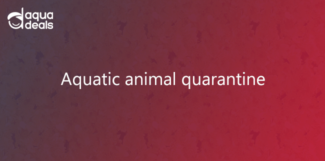 Aquatic animal quarantine