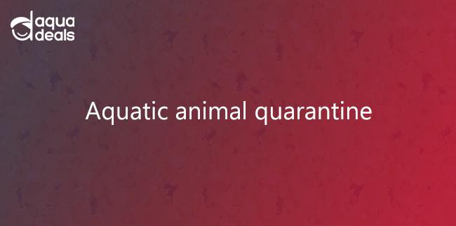 Aquatic animal quarantine