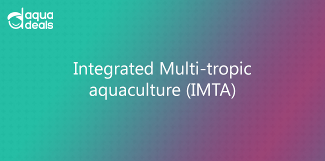 Integrated Multi-tropic aquaculture (IMTA)