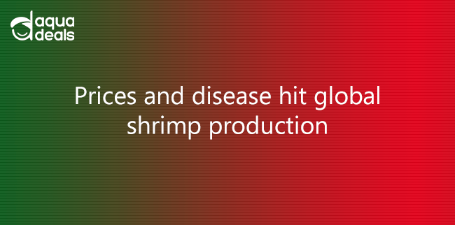Prices and disease hit global shrimp production