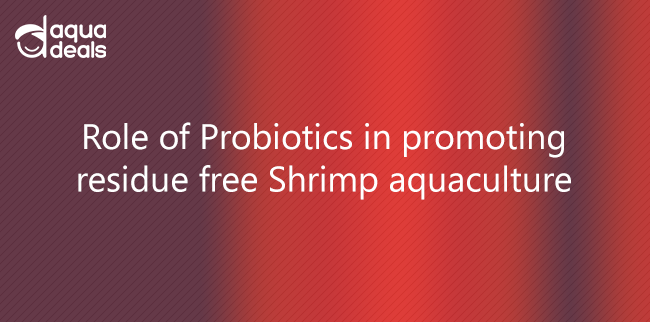 Role of Probiotics in promoting residue free Shrimp aquaculture