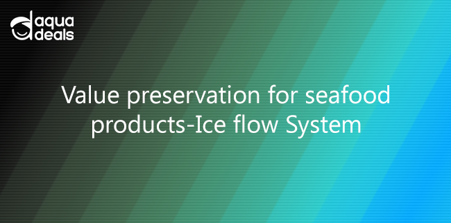 Value preservation for seafood products-Ice flow System