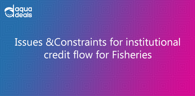 Issues & Constraints for institutional credit flow