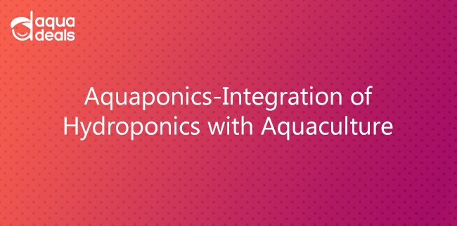 Aquaponics-Integration of Hydroponics with Aquaculture