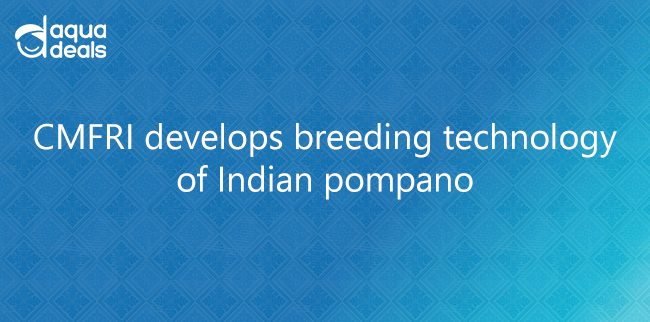 CMFRI develops breeding technology of Indian pompano