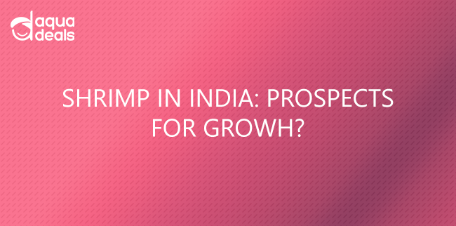 SHRIMP IN INDIA: PROSPECTS FOR GROWTH?