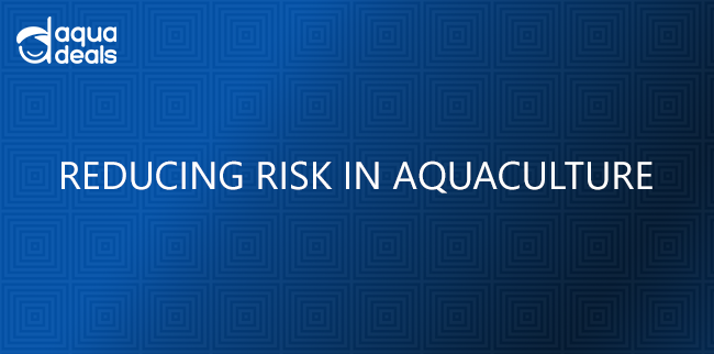 REDUCING RISK IN AQUACULTURE