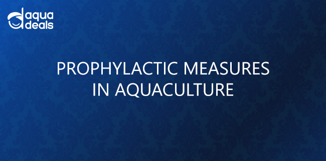 PROPHYLACTIC MEASURES IN AQUACULTURE