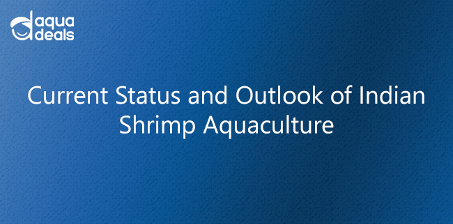 Current Status and Outlook of Indian Shrimp Aquaculture