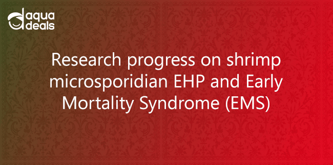 Research progress on shrimp microsporidian EHP and Early Mortality Syndrome (EMS)