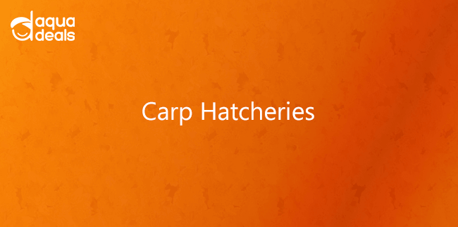 Carp Hatcheries