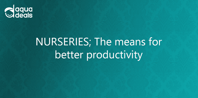NURSERIES; The means for better productivity