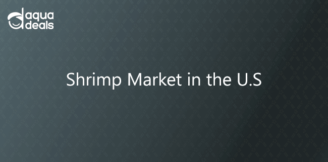 Shrimp Market in the U.S.
