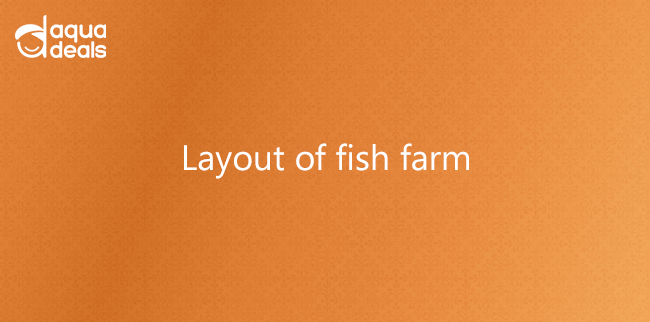 Layout of fish farm