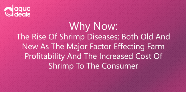 Why Now: The Rise of Shrimp Diseases