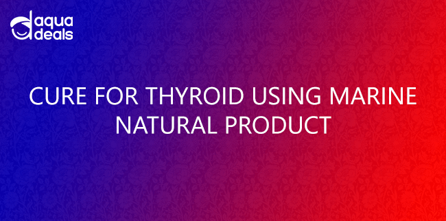 CURE FOR THYROID USING MARINE NATURAL PRODUCT
