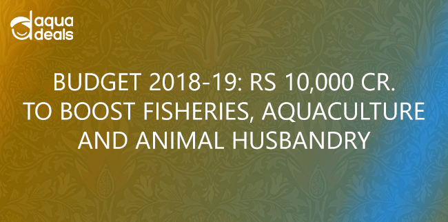 BUDGET 2018-19: RS 10,000 CR. TO BOOST FISHERIES, AQUACULTURE AND ANIMAL HUSBANDRY