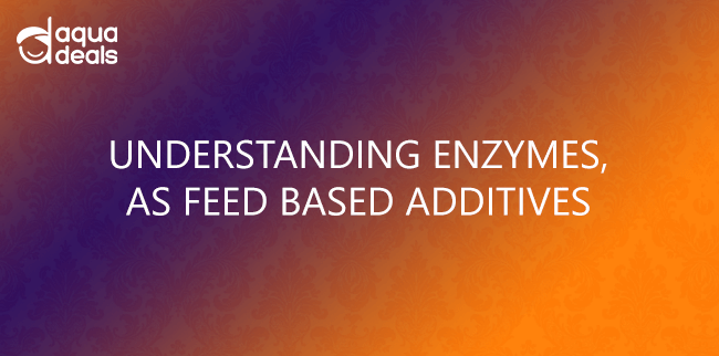 UNDERSTANDING ENZYMES, AS FEED BASED ADDITIVES