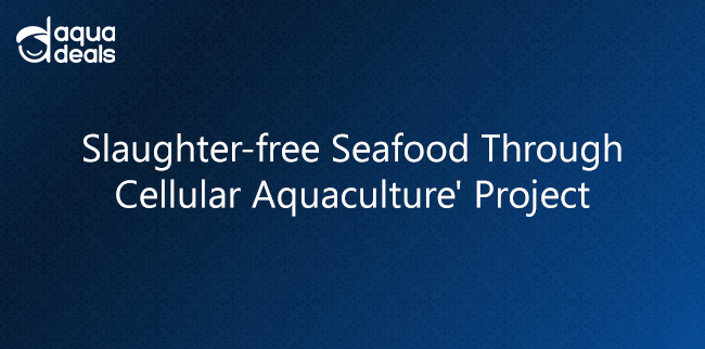 Slaughter-free Seafood Through Cellular Aquaculture' Project